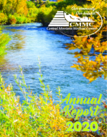2020_Annual Report_CMMC